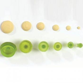壓印模組 - 菊花 6款