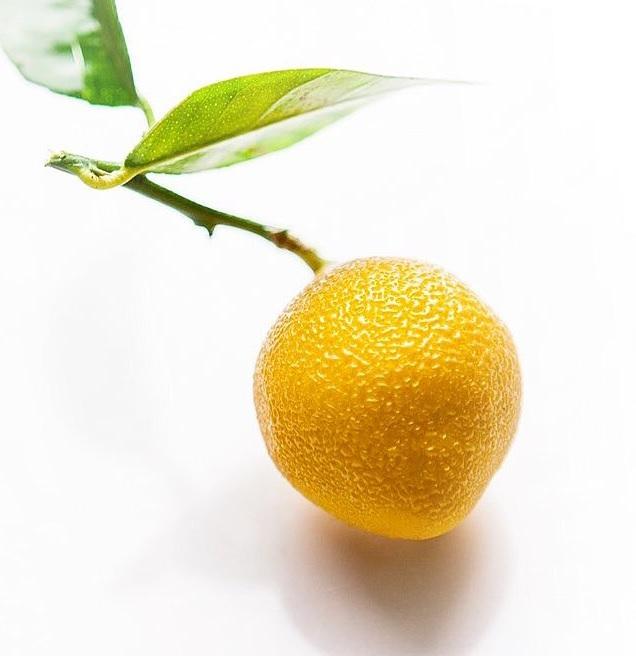 檸檬蛋糕模 / 外模尺寸: 350*80*高60mm / 內模尺寸75*50*50ml / 50ml x4 模 / 表皮紋路 需自行使用紋路壓印